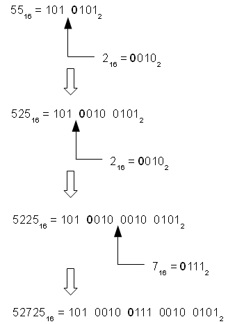 Example Binary/Hexadecimal Palindrome Generation